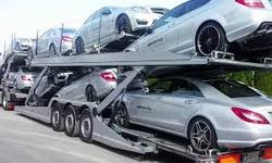 Which is the best option to Choose-Professional Car Transport  OR Local Movers